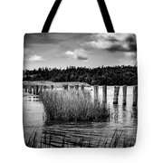 Mccormack's Beach Provincial Park, Black And White Tote Bag