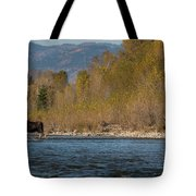 ME8 Tote Bag by Joshua Able's Wildlife