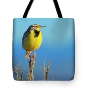 Meadowlark Tote Bag by John De Bord