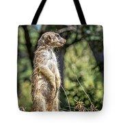 Meerkat Alert Tote Bag by Kate Brown