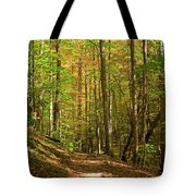 Meigs Creek Trailhead In Smoky Mountains National Park Tote Bag