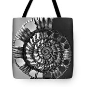Metal Sea Shell Tote Bag