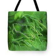 Metamorphosis-1 Tote Bag