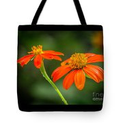 Mexican Sunflower Duo Tote Bag by Sabrina L Ryan