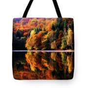 Mirrored Gallery Tote Bag