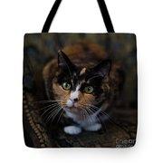 Mischa Tote Bag by Irina ArchAngelSkaya