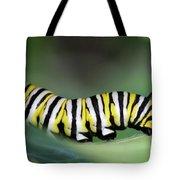 Monarch Caterpillar Macro Tote Bag