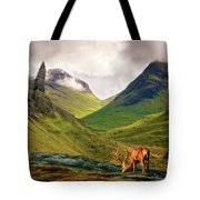 Monarch Of The Glen Tote Bag