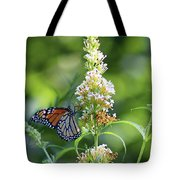 Monarch On White Butterfly Bush Tote Bag