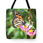 Monarch's Stance... Tote Bag