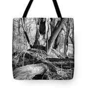 Monochrome Woods 2 Tote Bag