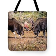 Moose Bulls Spar In The Colorado High Country Tote Bag