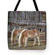 Morgan Horses By The Barn Tote Bag