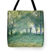 Morning Mist Also Known As Late Spring Tote Bag