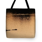 Morning On The River Tote Bag