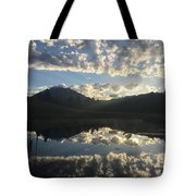 Morning Refection Tote Bag