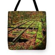Mossy Train Track In Fall Tote Bag