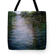 Mount Baker Peekaboo View From Lowell Riverfront Trail Tote Bag by J Reynolds Dail