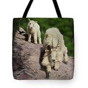 Mountain Goats- Nanny And Kid Tote Bag