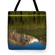 Mountain Reflection In Beirstadt Lake Tote Bag