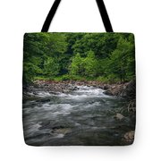 Mountain Stream In Summer #2 Tote Bag by Tom Claud