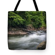 Mountain Stream In Summer #3 Tote Bag by Tom Claud