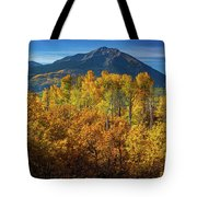 Mountains And Aspen Tote Bag by John De Bord