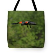 Mr. Red-winged Blackbird In-flight Tote Bag