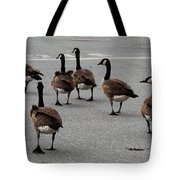 My Walking Buddies Tote Bag