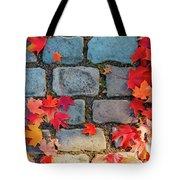 Natural Autumn Leaf Background  Tote Bag