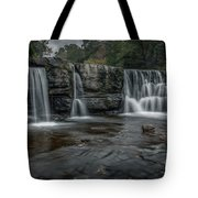 Natural Dam 2018 1 Tote Bag