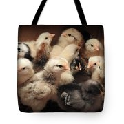 New Additions Tote Bag