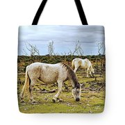 New Forest Ponies On The Heath Tote Bag