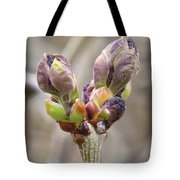New Life In The Lilacs Tote Bag