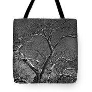Niagara Falls Winter Textures Tote Bag