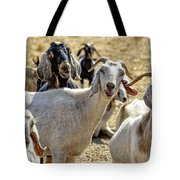 Norris's Happy Goats Tote Bag