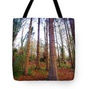 Not Sequoia Tote Bag