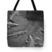 Now We Take It Easy Tote Bag