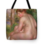 Nude, Back View, 1911 Tote Bag