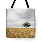 Oak And Barley Tote Bag by Nick Bywater