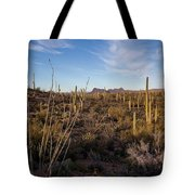 Ocotillo Twilight Tote Bag by Lon Dittrick
