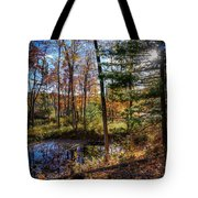 October Late Afternoon Tote Bag by Kendall McKernon