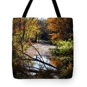 October Window Tote Bag by Kendall McKernon
