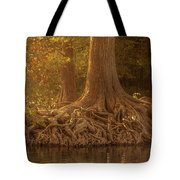 Old Cypress Tree Roots Tote Bag