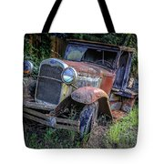 Old Model Aa Ford In The Jungle 2 Tote Bag