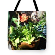 Old Pots New Blooms Tote Bag