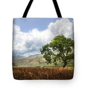 Old Scottish Farmlands Under The Clouds Tote Bag