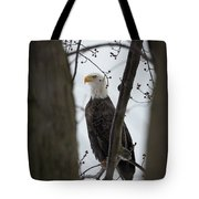 On Morning Watch Tote Bag