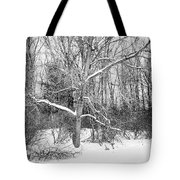 On The Edge Tote Bag by Kendall McKernon