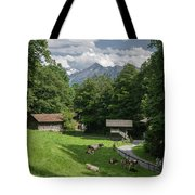 one afternoon in Ballenberg Tote Bag